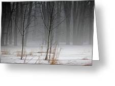 Winter Fog Greeting Card