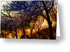 Winter Forest Sunset Oil Style Greeting Card