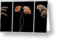 Winter Garden Triptych Greeting Card
