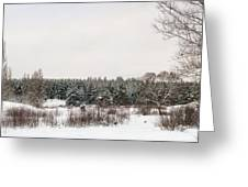 Winter Glade Under Snow. Greeting Card