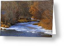 Winter Gold On The Yakima River Greeting Card