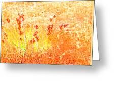 Winter Grasses Greeting Card