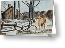 Winter Grazing  Greeting Card