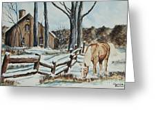 Winter Grazing  Greeting Card