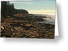 Winter Harbor Maine Greeting Card
