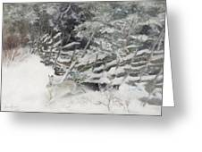 Winter Hare At The Fence Greeting Card