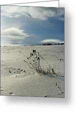 Winter Hill  Greeting Card