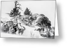 Winter Hwy 40 Greeting Card