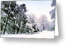 Winter Impressions Greeting Card