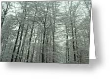 Winter In Germany Greeting Card