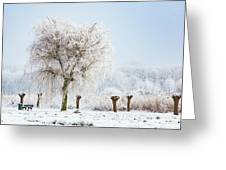 Winter In Holland Greeting Card