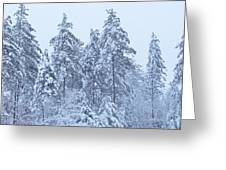 Winter In Maine 2017 Greeting Card