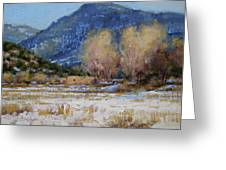 Winter In New Mexico Greeting Card