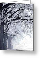 Winter In Our Street Greeting Card