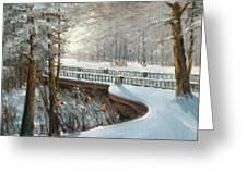 Winter In Pavlovsk Park Greeting Card