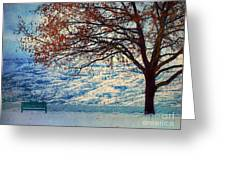 Winter In Peachland Greeting Card