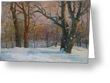 Winter In The Wood Greeting Card