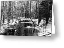 Winter In The Woods Greeting Card