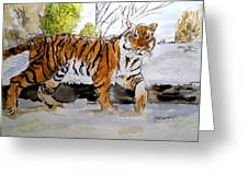 Winter In The Zoo Greeting Card