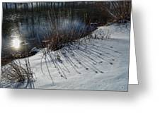 Winter Lake View Greeting Card