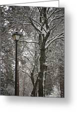 Winter Lamp Post Greeting Card