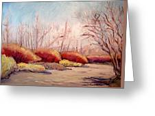 Winter Landscape Dry Creek Bed Greeting Card