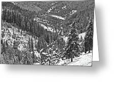 Winter Landscape In Giurgeu Mountains Greeting Card