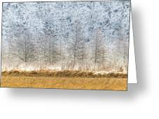 Winter Layers Greeting Card