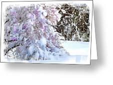 Winter Lilac Greeting Card