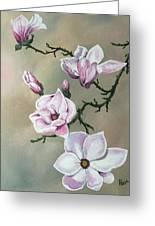 Winter Magnolia Blooms Greeting Card