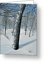 Winter Maple Greeting Card