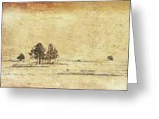 Winter Marsh Greeting Card
