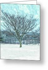 Winter Mimosa Painterly Greeting Card