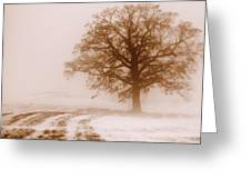 Winter Mist Greeting Card