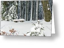Winter Moments In Harz Mountains Greeting Card