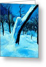 Winter Moonlight And Snow Greeting Card