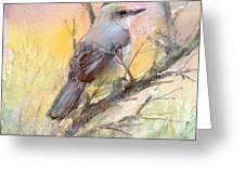 Winter Morning - Mockingbird Greeting Card
