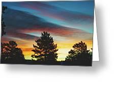 Winter Morning Glory Greeting Card by Jason Coward