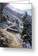 Winter Mountain Path Greeting Card