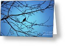 Winter Mourning Greeting Card