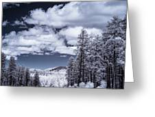 Winter On 89a Greeting Card