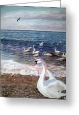 Winter On A Beach In Feodosiya. Crimea Greeting Card