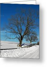 Winter On A Country Road Greeting Card