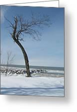 Winter On Lake Erie Greeting Card
