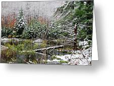 Winter On The Beaver Pond Greeting Card
