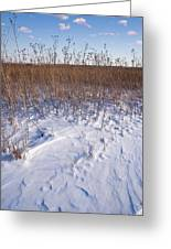 Winter On The Prairie Greeting Card