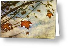 Winter On The Way Greeting Card
