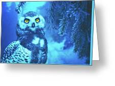 Winter Owl Greeting Card
