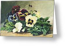 Winter Pansies Greeting Card