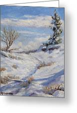 Winter Path Greeting Card by Debra Mickelson